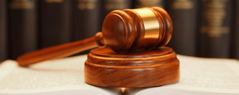 egresados de derecho en Colciencias